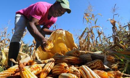 FAO destaca reducción pobreza en República Dominicana; apoyará esfuerzos Gobierno en región Sur