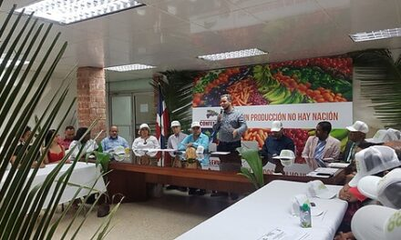Resaltan la importancia que tiene el cultivo de cocos en República Dominicana