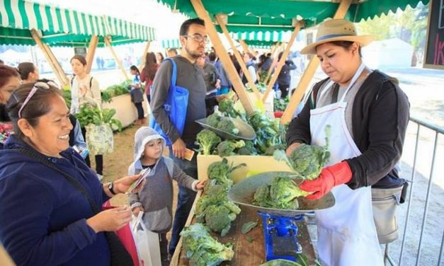 Mexicanos intercambian basura por alimentos en Mercado del Trueque