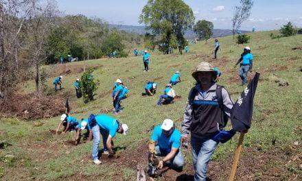 Plan reforestación en cuenca del río Yaque del Norte contempla sembrar 15,000 tareas en los próximos meses