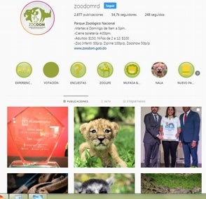 Zoológico gana el primer lugar en mejor campaña de Instagram