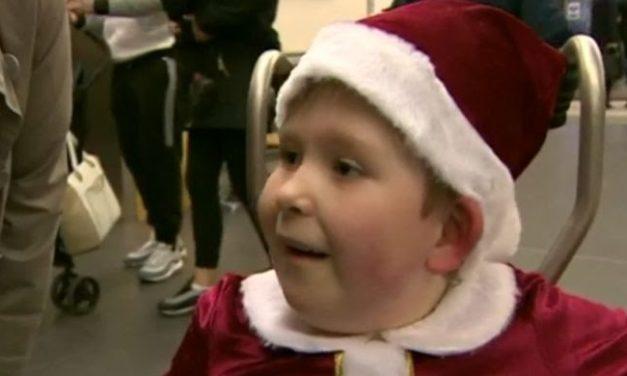 El asombroso caso del niño inglés que nació con solo un 2% del cerebro