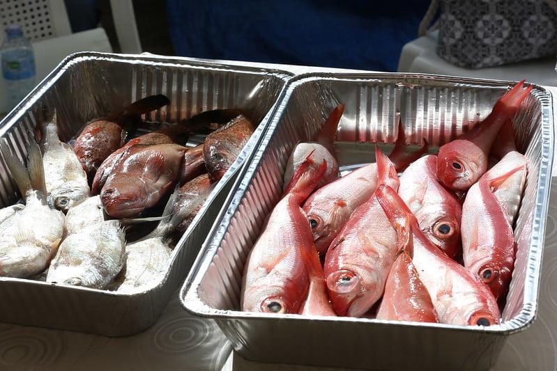 En Visita Sorpresa a pescadores de La Romana, Danilo Medina dispone donación 30 embarcaciones y camión refrigerado modernizarán pesca