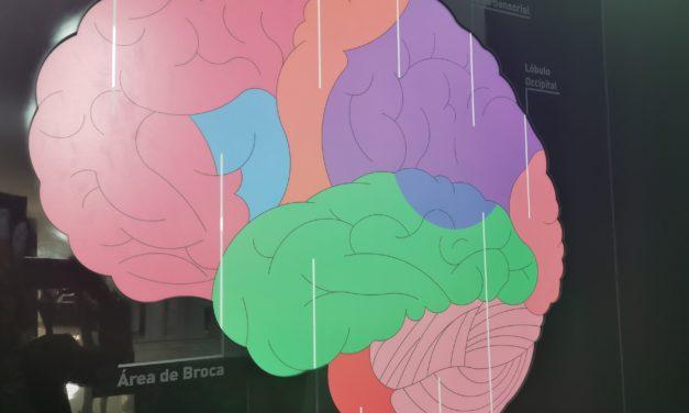 'Banco Nacional de Cerebros Humanos' desarrollado por UNPHU investiga para diagnosticar y tratar Alzheimer, Parkinson y Huntington. Primer banco de la región